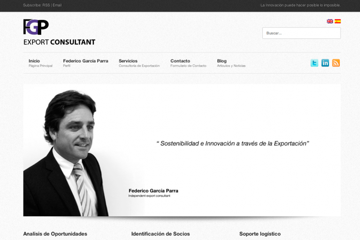 diseño-web-consulting