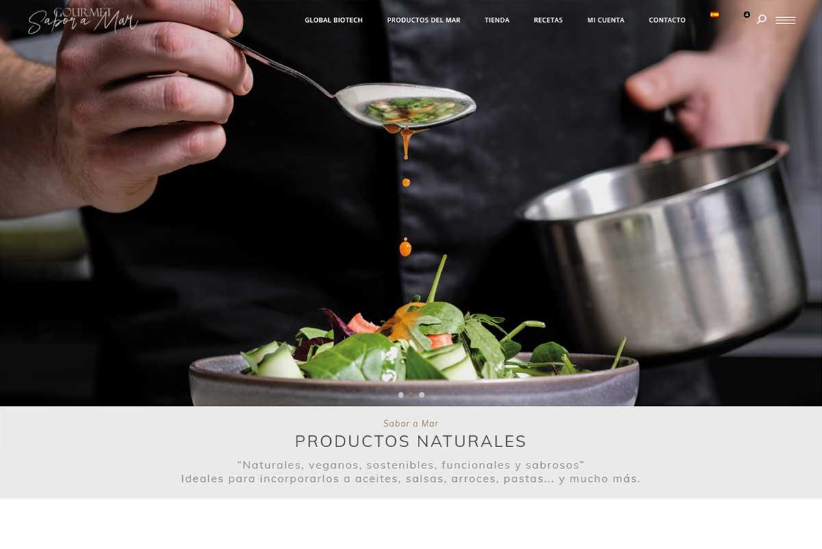 pagina-web-Gourmet-Sabor-a-Mar